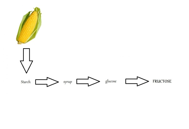 Corn diagram